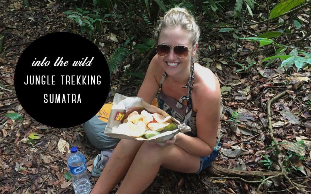 Bukit Lawang: Jungle trekking op Sumatra