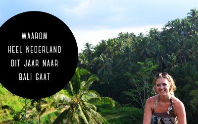 Waarom héél Nederland dit jaar naar Bali gaat