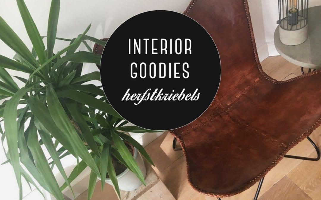 Interior goodies: herfstkriebels