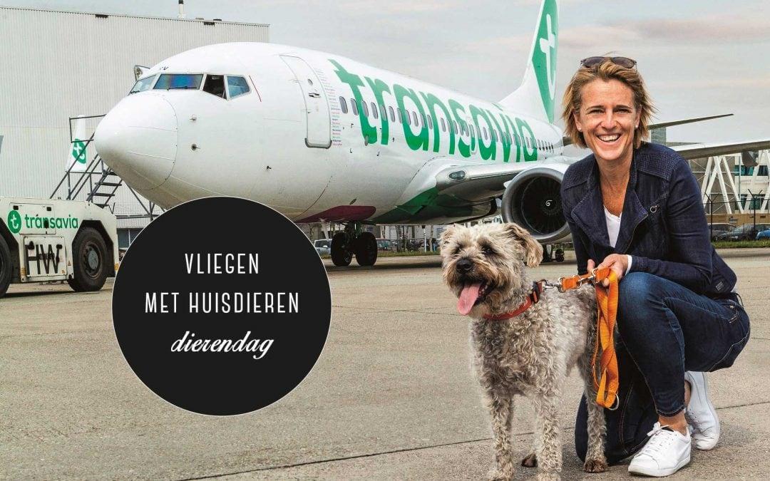 Huisdieren vliegen op dierendag gratis mee met Transavia