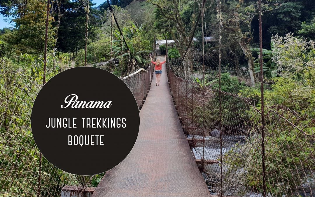 Jungle hikes Boquete: 3 amazing hiking trails in Panama