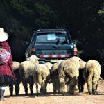 Cajamarca-blog